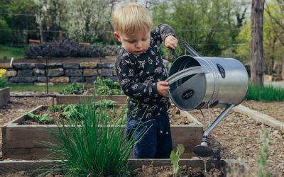 Tuinieren op kindermaat in een vierkantemetertuin